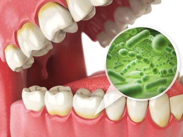 Máy Kệ Treo Tiệt Trùng Bàn Chải Đánh Răng Lấy Nhả Kem Tự Động